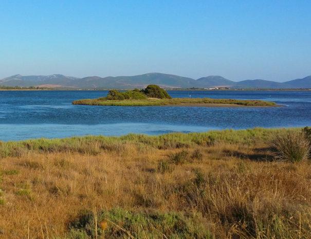 Stagni a Porto Pino, visita il sud ovest Sardegna soggiornando all'Agriturismo Sirimagus